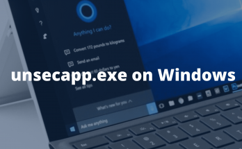 what-is-unsecapp-exe-and-is-it-safe